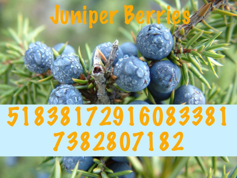 Juniper Berries